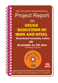 Geuge Reduction of Iron and Steel manufacturing eBook