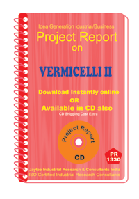 Vermicelli manufacturing Project Report eBook
