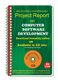 Computer Software Development Project report eBook