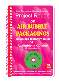 Air Bubble Packaging's manufacturing Project Report eBook