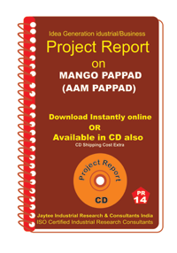 Mango Pappad (aam Pappad) manufacturing eBook