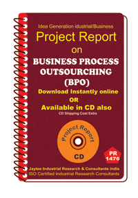 Business Process Outsourcing (BPO) establishment eBook