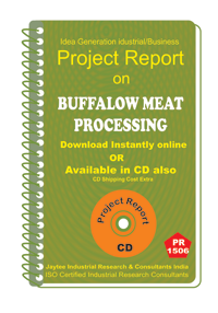 Buffalow Meat Processing Project Report eBook
