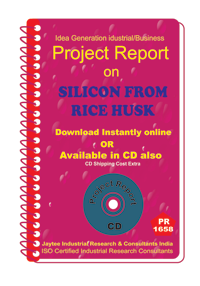Silicon From Rice Husk III manufacturing Project Report eBook