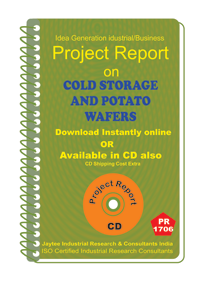Cold Storage and Potato Waffers Project Report eBooK