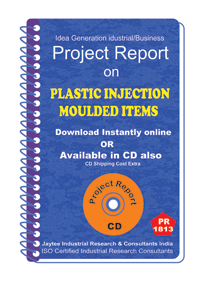 Plastic Injection Moulded Items Project Report eBook