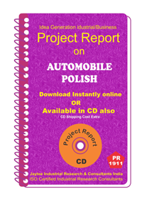 Automobile Polish Manufacturing Project Report eBook