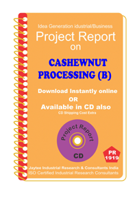 Cashew Nut Processing (B) Project Report eBook