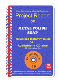 Metal Polish Soap Project Report eBook