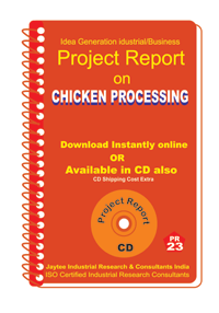 Chicken Processing Project Report eBook