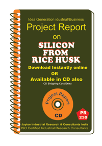 Silicon From Rice Husk I manufacturing Project Report eBook