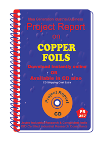 Copper foils manufacturing Project Report Ebook
