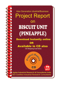 Biscuit Unit (Pineapple) Project Report manufacturing Ebook