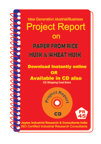 Paper From Rice Husk and Wheat Husk Manufacturing eBook