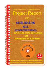 Steel Rolling Mill (by induction Furnace)III Project ReporteBook
