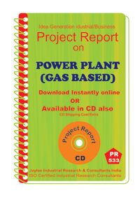 power Plant (Gas Based) B establishment project report eBook