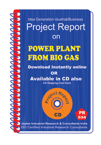power Plant from Bio Gas establishment project report eBook
