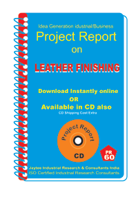 Leather footwear Manufacturing Project report eBook