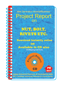 Nut ,Bolt, Rivets, etc Manufacturing Project Report eBook