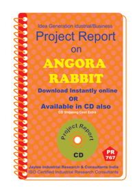 Angora Rabbit Manufacturing Project Report eBook