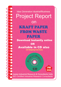 Kraft Paper From Waste Paper manufacturing Project Report eBook